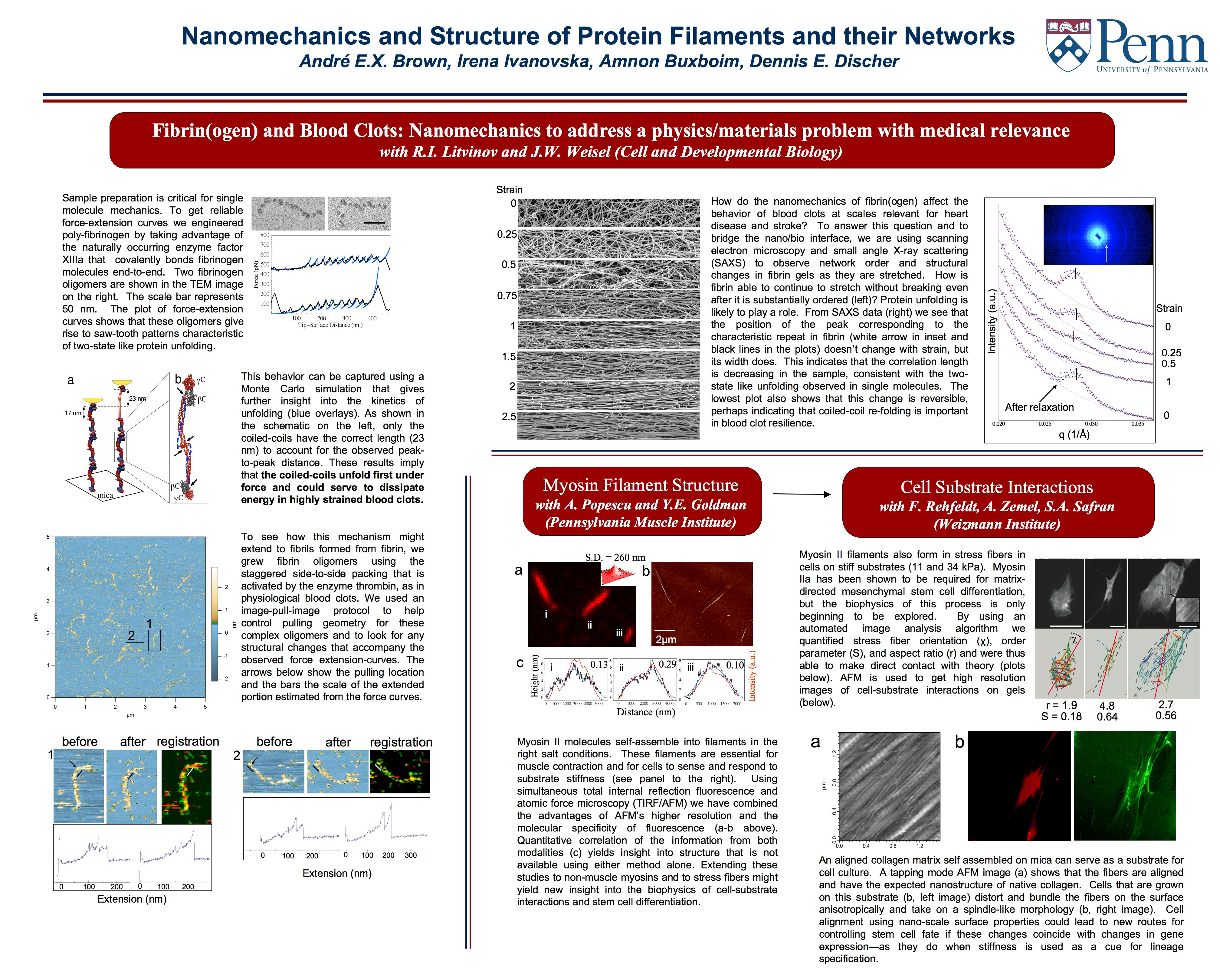 upenn research studies